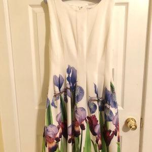 Calvin Klein Fit & Flare Iris Scuba Dress